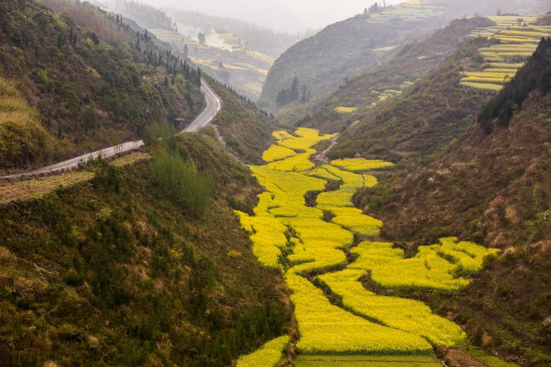 22A-Yunnan