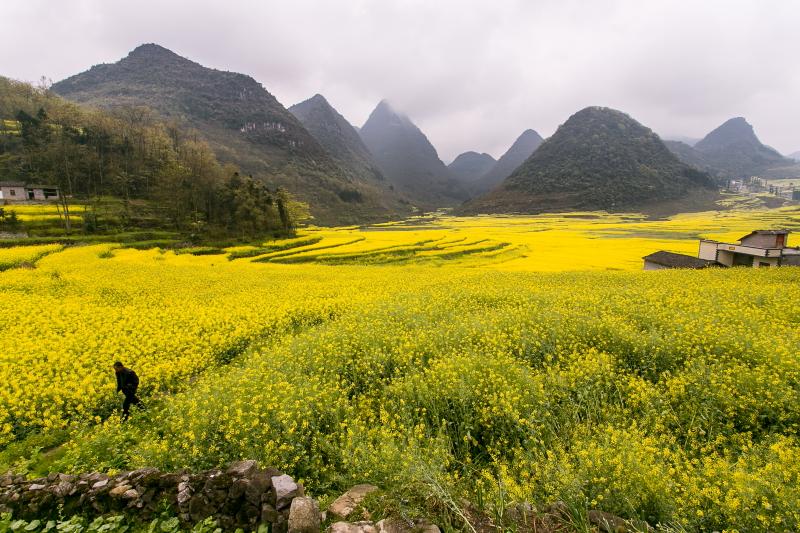23-Yunnan