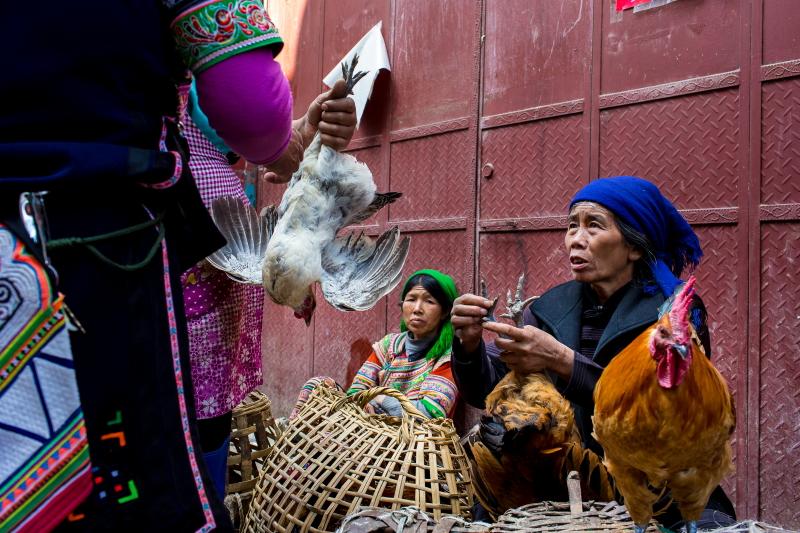 45-Yuanyang-Yunnan