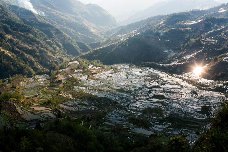 55-Yuanyang-Yunnan