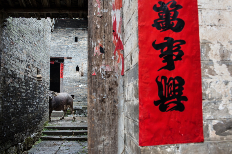 82-Xingping